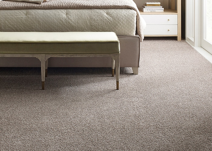 costco carpet review image