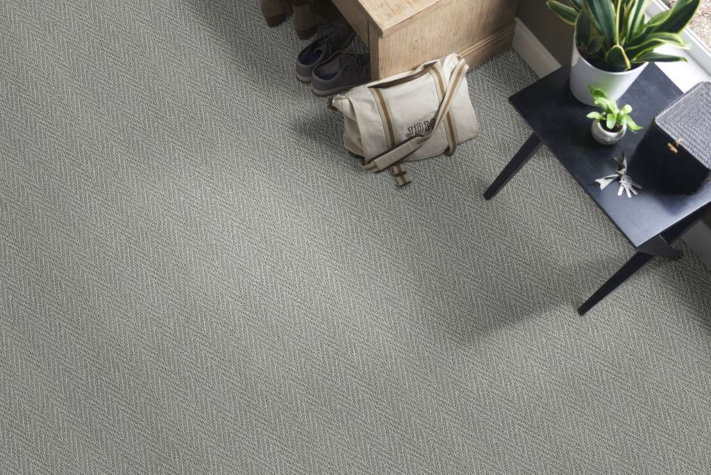platinum plus carpet review image