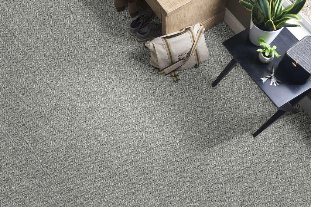 platinum plus carpet review image