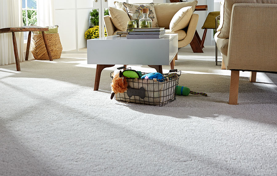 stainmaster carpet review image