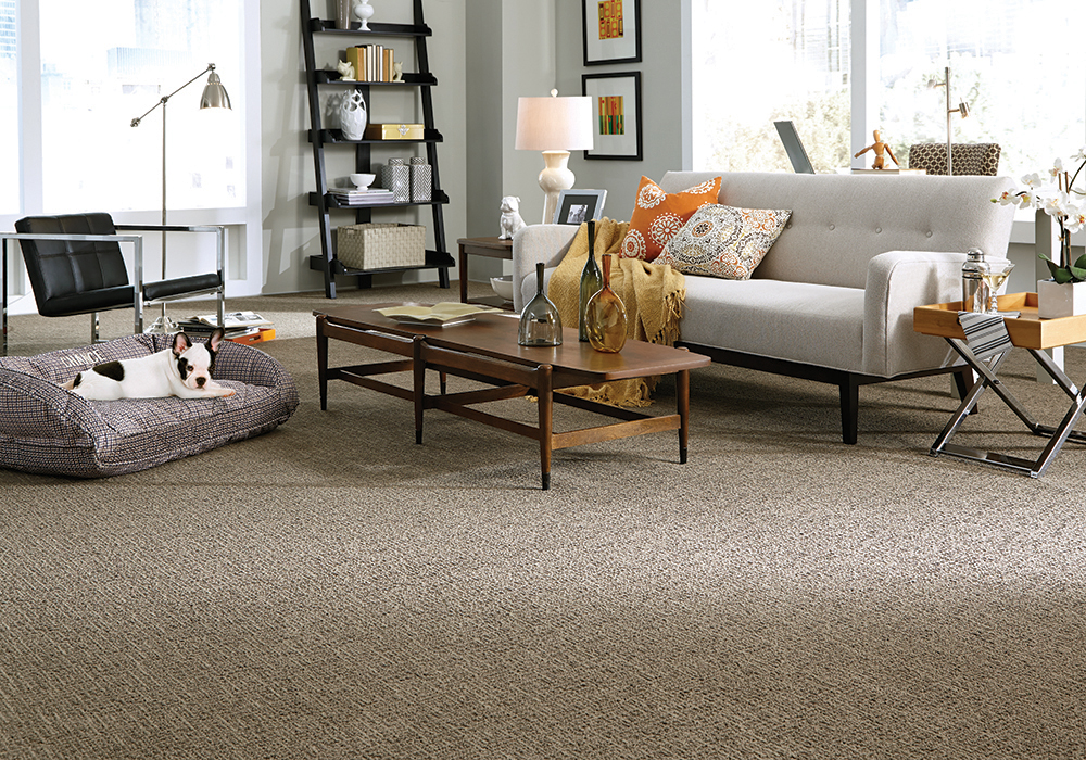 stainmaster petprotect carpet review image
